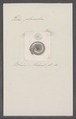 Helix planorbis - - Print - Iconographia Zoologica - Special Collections University of Amsterdam - UBAINV0274 089 01 0035.tif