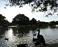 Heritage Duck Pond.jpg