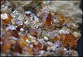 HessoniteEtGrossulaire Grenat ItalieProvenanceAla Ref MGL35517 MuséumHistoireNaturelleLille GLAM2016 Photo.F.Lamiot 1.jpg