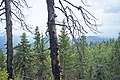 Hiking to Malinovaya (21034647809).jpg