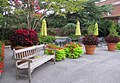 Hillwood Gardens in July (19613955010).jpg