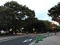 Hiroshima Peace Memorial Park at dusk.jpg