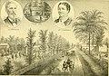 History of Shiawassee and Clinton counties, Michigan (1880) (14772784052).jpg