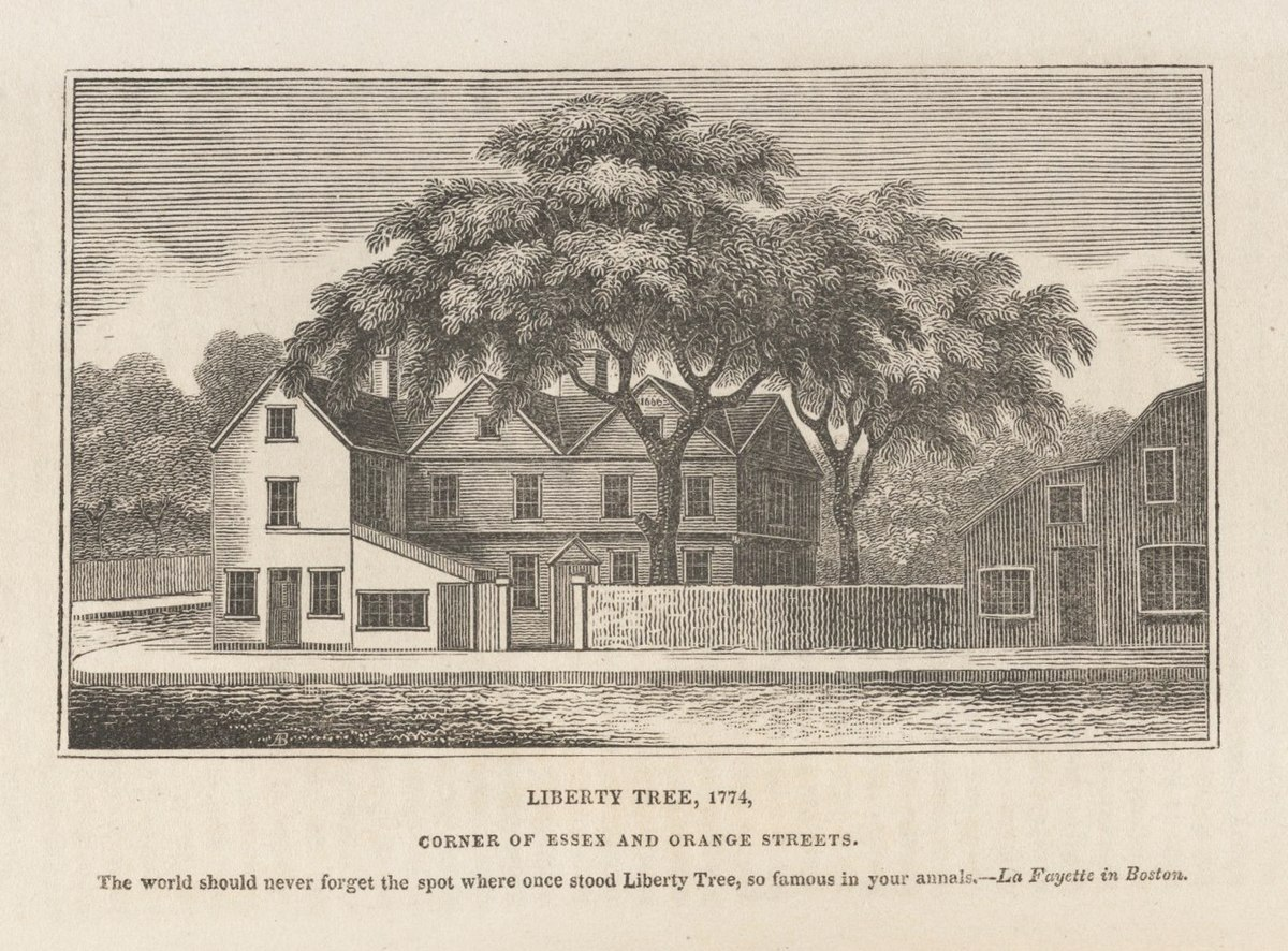 on 1775 map of intree ma