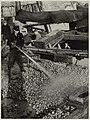 Hulp van de brandweer, om de aardappelen die uit het rampgebied komen (watersnoodramp in Zeeland), en daar ingekuild waren, schoon te spuiten., NL-HlmNHA 54010512.JPG