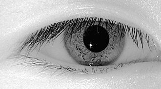 """Iris recognition - Even """"dark brown"""" eyes reveal rich iris texture in the NIR band, and most corneal specular reflections can be blocked."""