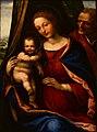Il Sodoma Sacra Famiglia Galleria Sabauda 22072015.jpg