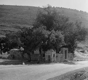 Dayr Ayyub - Dayr Ayyub was located close to Bab al-Wad; here the Maqam (shrine) of Imam Ali, at Bab al-Wad, photographed about 1934-39