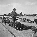 In het strafkamp te Vught, zijn 7000 Nederlandse collaborateurs en landverraders, Bestanddeelnr 900-4267.jpg