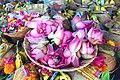 Indian lotus flowers.jpg