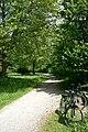 Inn-Radweg Passau Wernstein.jpg