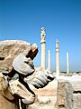 Iran Persepolis - panoramio.jpg