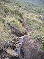 Isabeloca^ - panoramio.jpg
