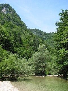Iška river in Slovenia