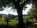 Itupeva - SP - panoramio (2998).jpg