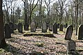 Jüdischer Friedhof Hoyernhagen 20090413 061.JPG