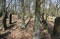 Jüdischer Friedhof Hoyernhagen stitched 6.jpg
