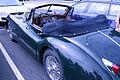 Jaguar (3).JPG