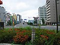 Japan National Route 4 -02.jpg