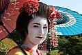 Japon Kyoto 0502.jpg