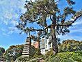 Jardín japonés 3 - panoramio.jpg