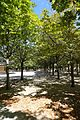 Jardin du Luxembourg @ Paris (28867195360).jpg