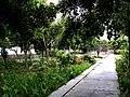 Jardins Tropicais II.jpg