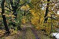 Jesienna droga - panoramio (1).jpg