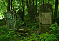 Jewish cemetery Jaroslaw 3.jpg