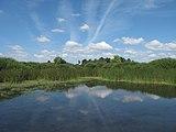 Kamenitý rybník, plocha II.jpg