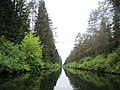 Kanał Augustowski przy moście do Serw - panoramio.jpg