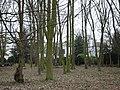 Kelsey House through trees - geograph.org.uk - 1094070.jpg