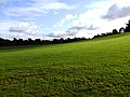 Kilkenny castle park - panoramio.jpg
