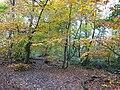 Kingmoor (South) Nature Reserve - geograph.org.uk - 1054639.jpg