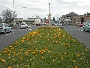 Kinson - Image: Kinson, crocuses geograph.org.uk 1182772