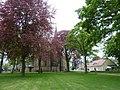 Kirchhof der Pfarrkirche St. Petronilla in Wettringen - geo.hlipp.de - 10248.jpg