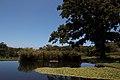 Kistenbosch National Botanical Garden - panoramio (3).jpg