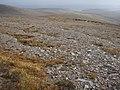 Knap of Trowieglen ridge - geograph.org.uk - 1497644.jpg
