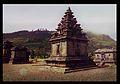 Komplek Candi Arjuna Dieng.jpg