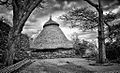 Konso Generation Tree, Ethiopia (15189865636).jpg