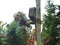 Králův Dvůr, výstražný kříž před nádražím.jpg