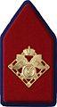 Kraagspiegel Regiment Bevoorradingstroepen.jpg
