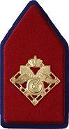 Kraagspiegel Regiment Bevoorradingstroepen