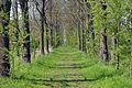 Kreis Pinneberg, Naturschutzgebiet 34 WDPA ID 30102 Haseldorfer Binnenelbe mit Elbvorland 04.jpg