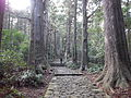 Kumano Kodo pilgrimage route Daimon-zaka World heritage 熊野古道 大門坂08.JPG
