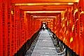 Kyoto Schrein Fushimi-Inari-taisha Torii 17.jpg