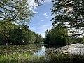 Lötsjön Lake in Sundbyberg.jpg