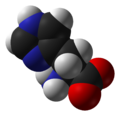 L-histidine-zwitterion-from-xtal-1993-3D-vdW.png