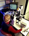 LRDT Microscopy Micromanipulation.jpg