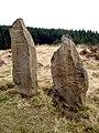 Laggangairn Standing Stones - geograph.org.uk - 456.jpg